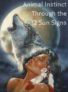 Native American Animal  Medicine Instinct Through the 12 Sun Signs