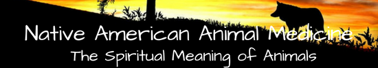 Native American Animal Medicine banner