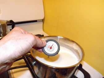 Make your own homemade yogurt without a yogurt maker.  You can use either raw milk or pasteurized milk.